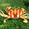 Paradise Sea crab plush toys toys for children of 80 # red car comfortable cushion