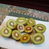 red pulp kiwifruit