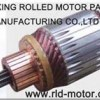 armature-Jiaxing Rolled Motor Parts