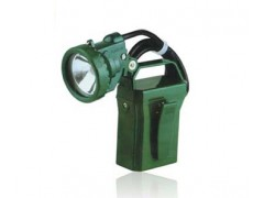 Neptune IW5100GF proof portable light work light