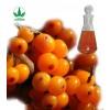 sea buckthorn fruit oil/hippophae rhamnoides oil/OEM capsule/cosmetical oil/healthcare softgel