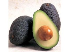Avocado oil, Avocado Essential Oil,Persea Gratissima Oil,CAS 8024-32-6