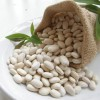 High Quality natural extract White Kidney Bean Extract