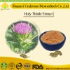 Natural St.Marys Thistle Extract Powder Silybin