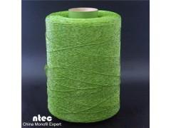 Pe Straight Grass Yarn