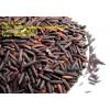 Organic Black Rice Vietnam Herbal Purple Rice High Quality