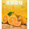 summer orange Chinese Fresh Citrus Fruits With Wholesales Price