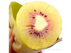 Red Hong Yang Kiwifruit
