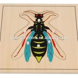 Teaching Aids Wasp Puzzle