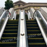 FUJI Outdoor Escalator