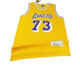 Los Angeles Lakers Dennis Rodm