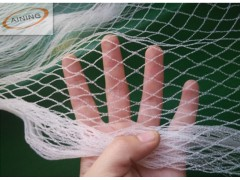 100% HDPE Agriculture  Anti BIRd Netting