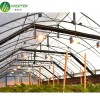 Low cost fully automated curtain fabric blackout greenhouse from China