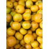 Wholesale Price fresh mandarin with good quality